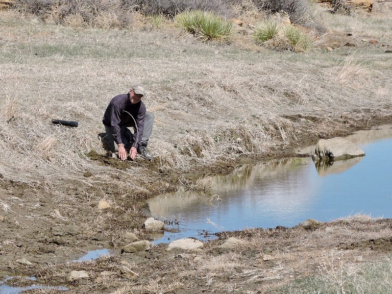 Jay planting a willow on bare ground at Medford Spring